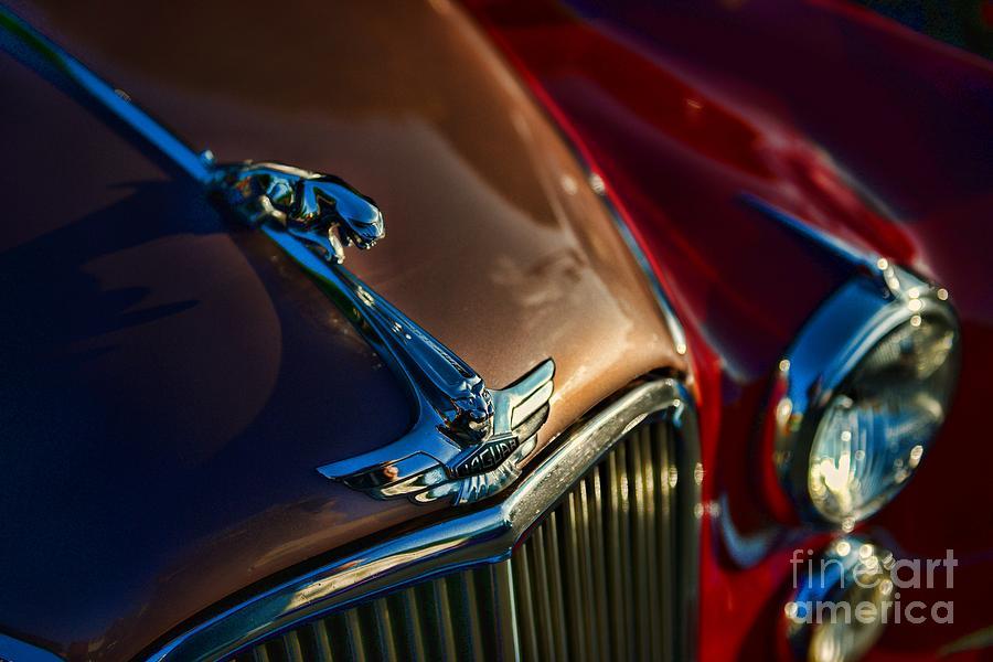 Paul Ward Photograph - 1953 Jaguar Mk7 by Paul Ward