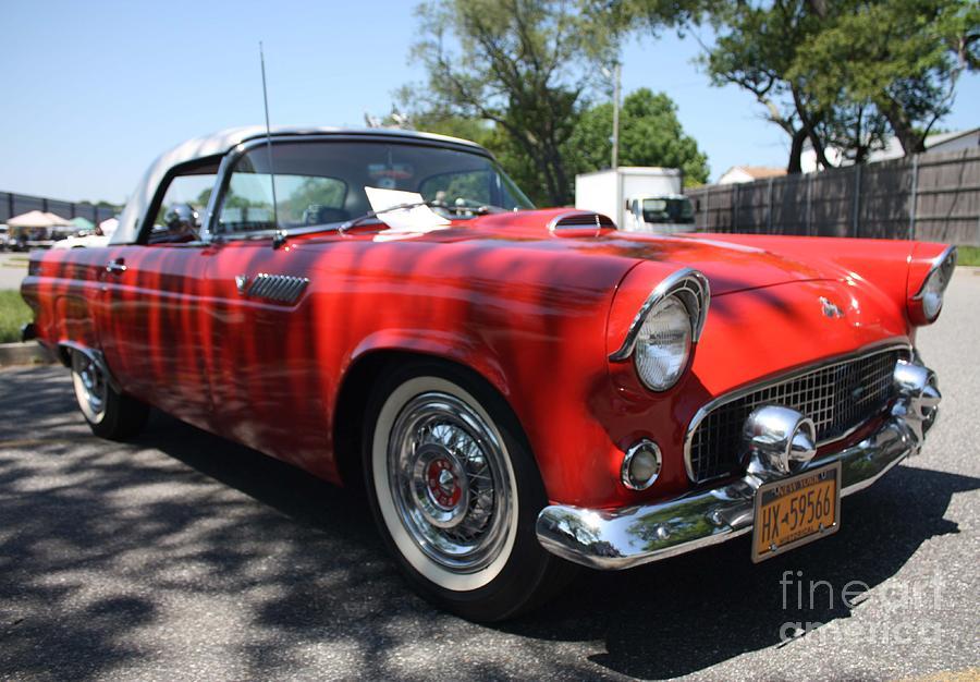 1955 Ford Thunderbird Convertible by JOHN TELFER