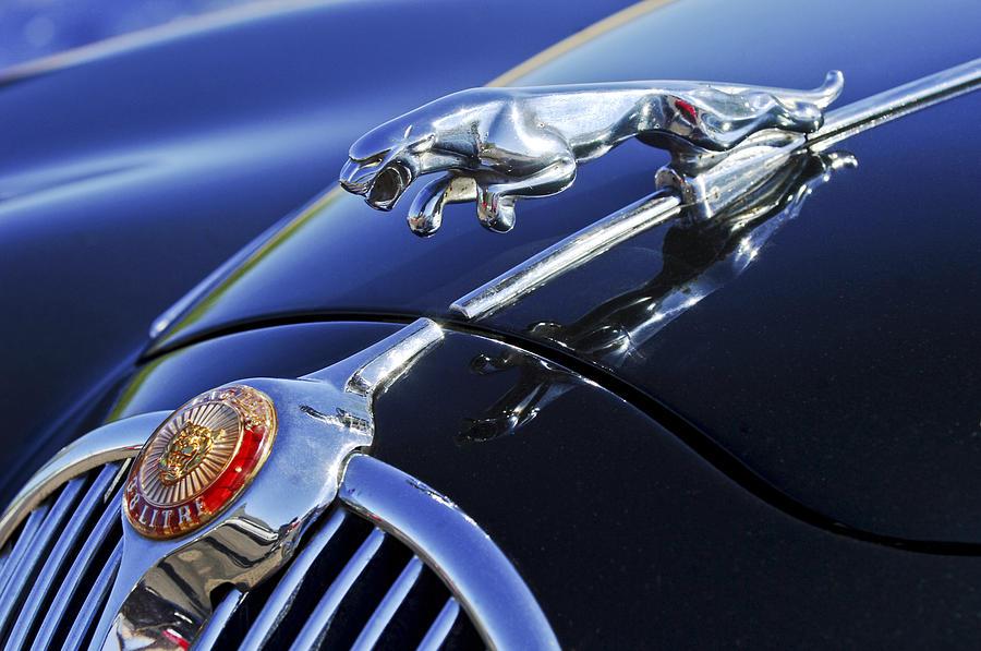 Transportation Photograph - 1964 Jaguar Mk2 Saloon by Jill Reger