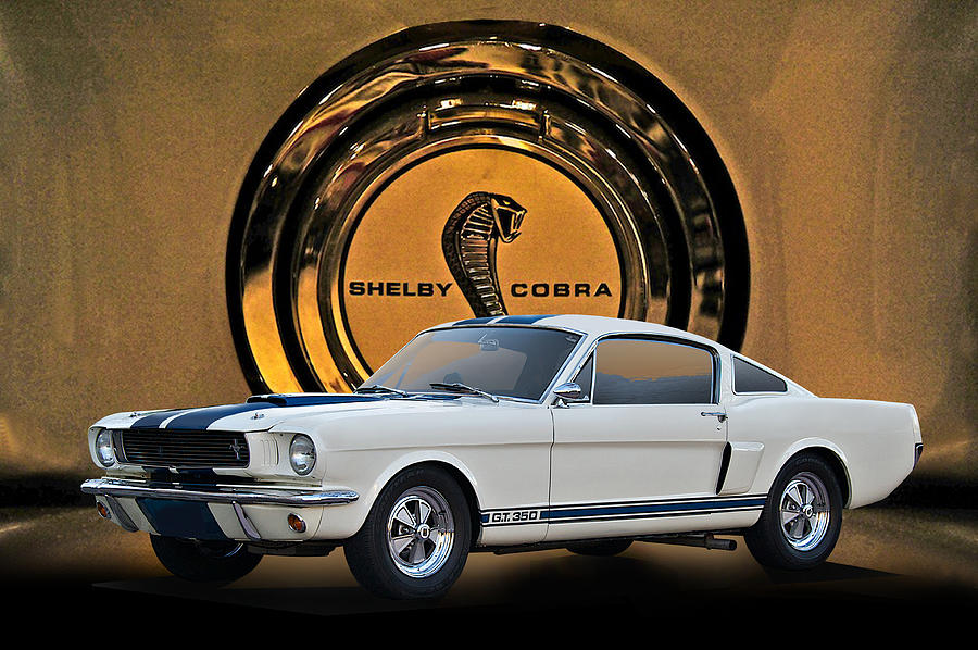 1966 Shelby Mustang Gt350 II Photograph