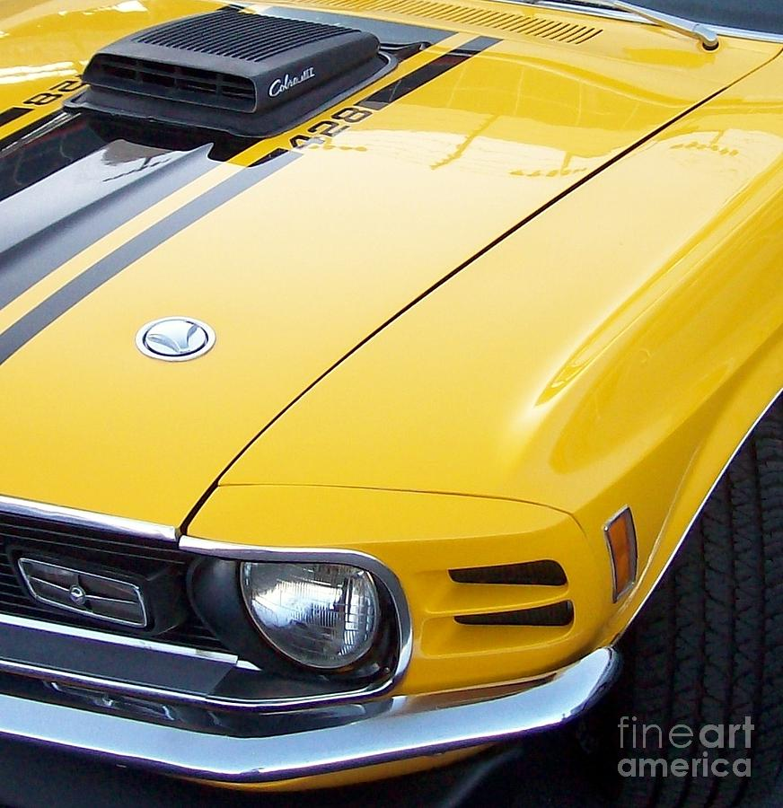 Ford Photograph - 1970 Ford Mustang Cobra Jet by Cynthia Bryan