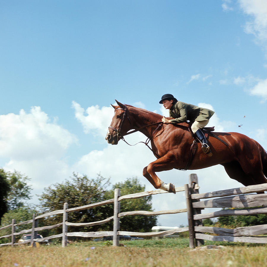 Horizontal Photograph - 1970s Woman Equestrian Rider Jumping by Animal Images