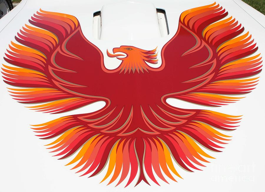 1979 Pontiac Firebird Emblem Photograph By John Telfer