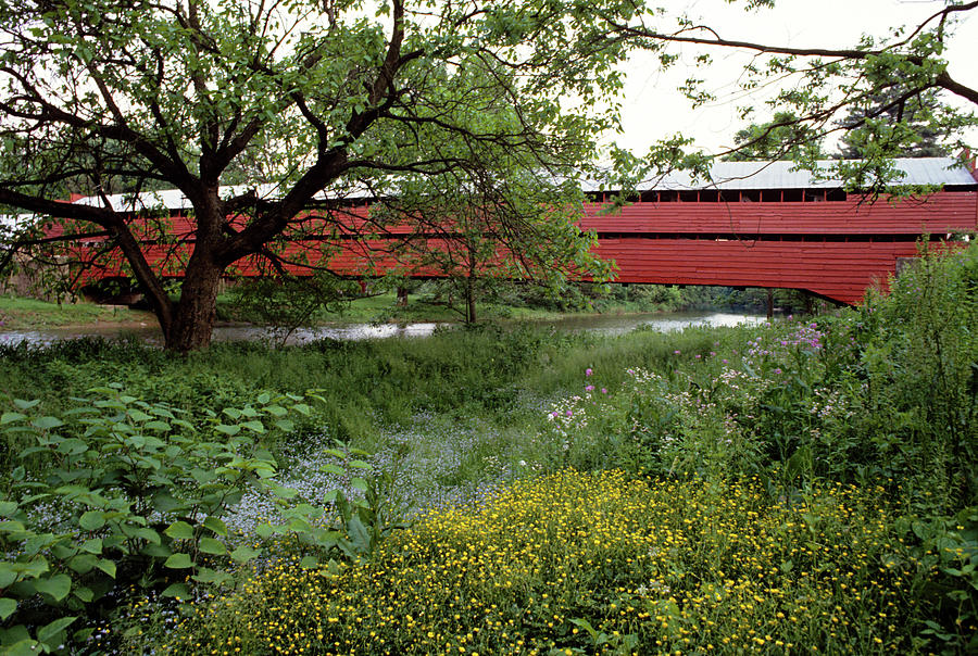 Horizontal Photograph - 1990s Dreibelbis Station Covered Bridge by Vintage Images