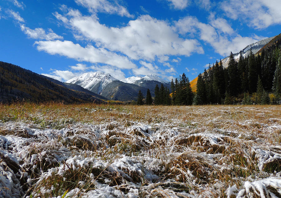 ouray chatrooms Our website has been designed to provide information to the public for the various government services provided in chaffee county we recognize that the site must be continually reviewed for.
