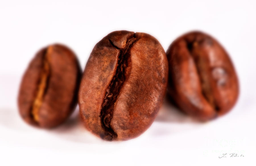 Food Photograph - 3 Coffee Beans by Iris Richardson