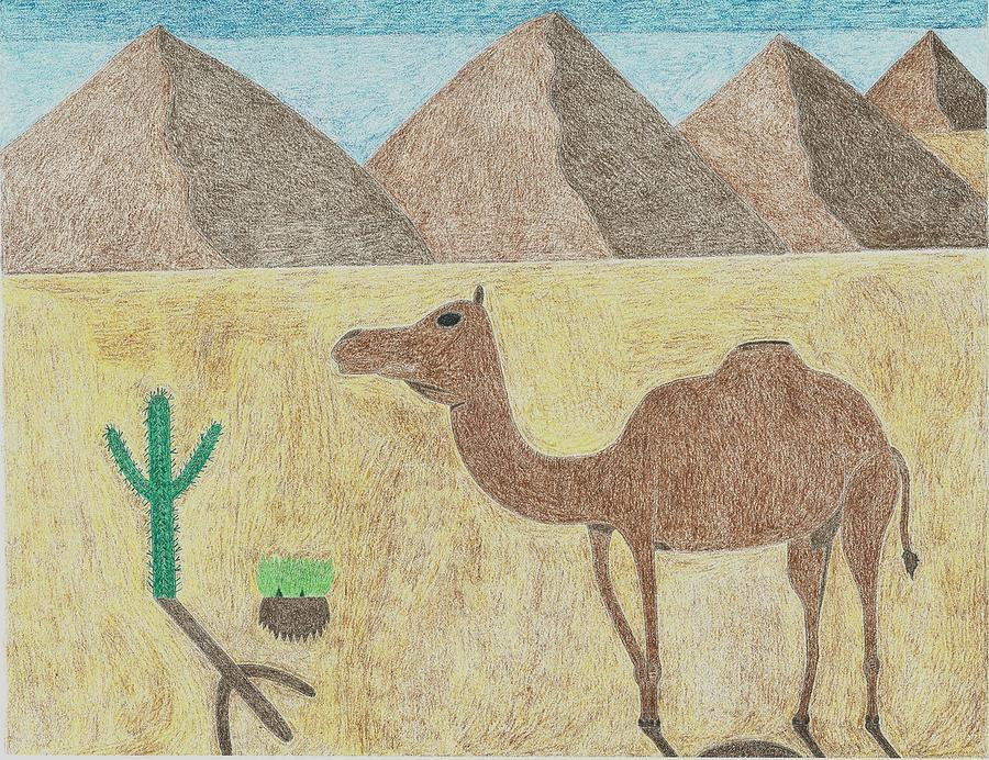 Человек в пустыне картинки для срисовки