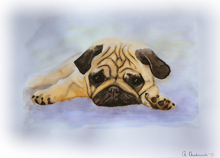 Dog Painting - A Little Bulldog by Anna Androsovski