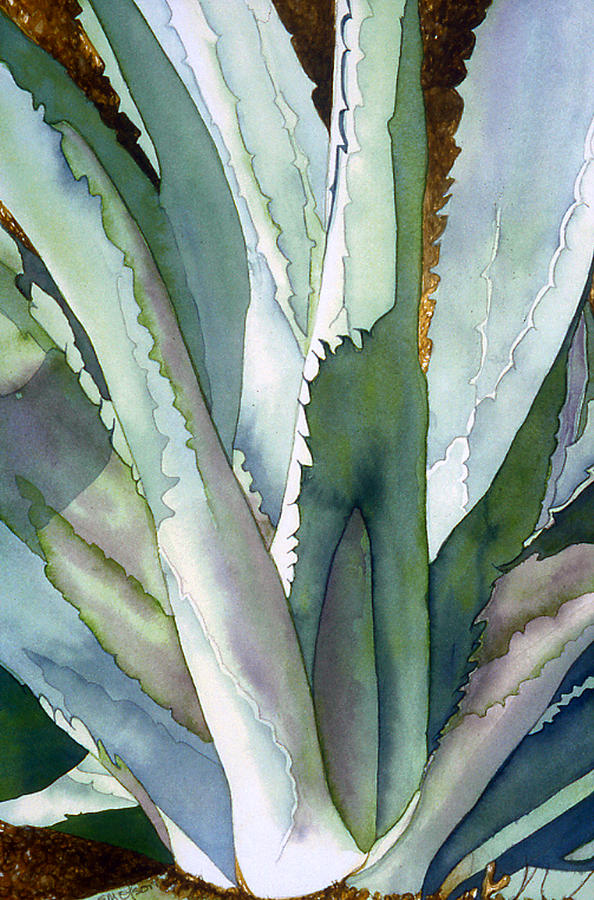 Botanical Painting - Agave 1 by Eunice Olson