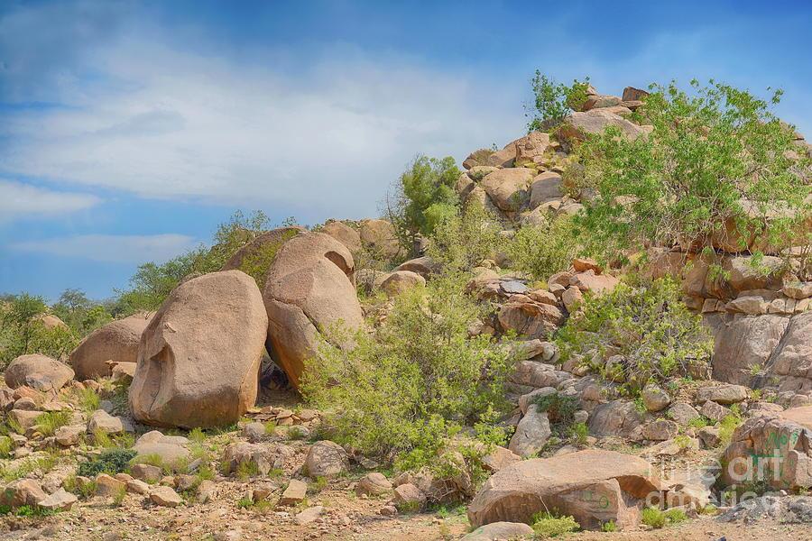 Landscape Photograph - Al Safa Mountain by George Paris