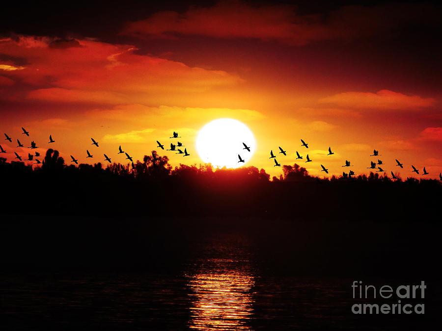 Sunset Photograph - Another Sunset by Ben Yassa