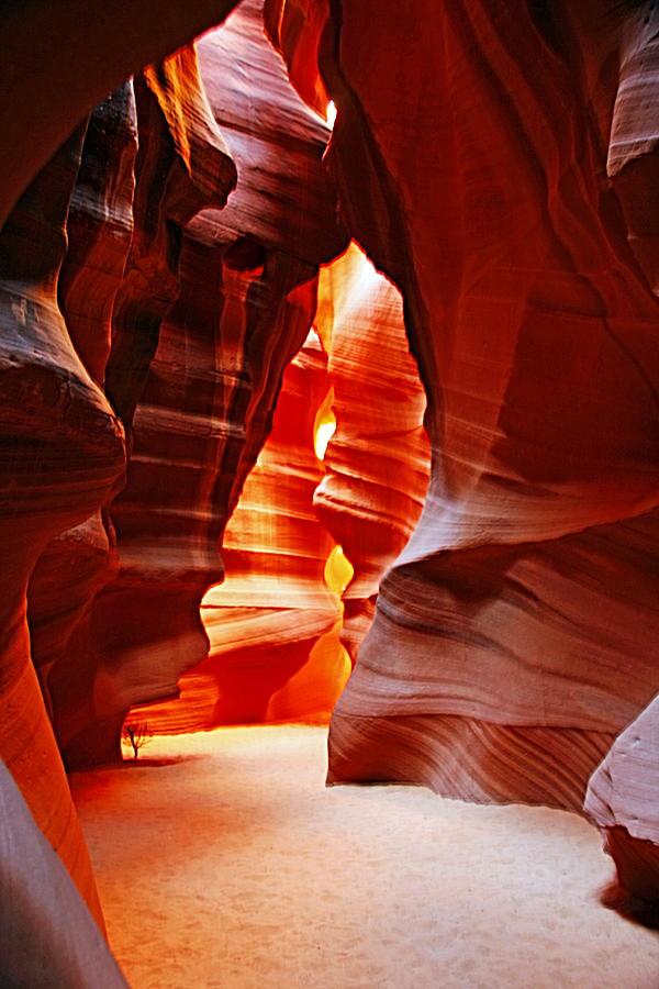 Arizona Photograph - Antelope Canyon  by Aidan Moran