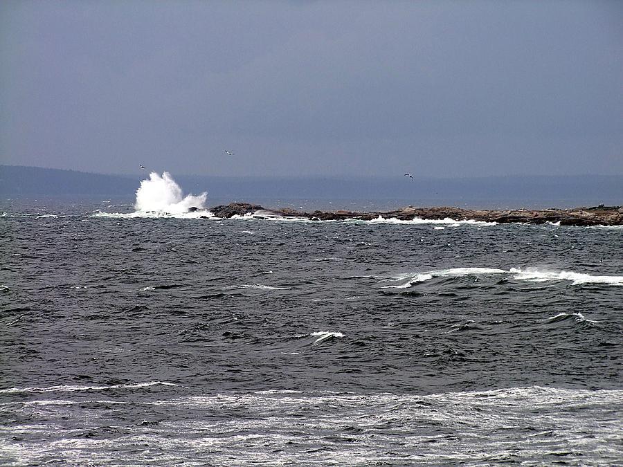 Atlantic Ocean Photograph - Atlantic Boomer by George Cousins