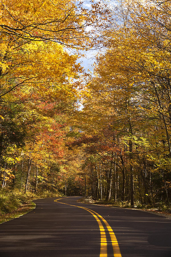 Road Photograph - Autumn Drive by Andrew Soundarajan