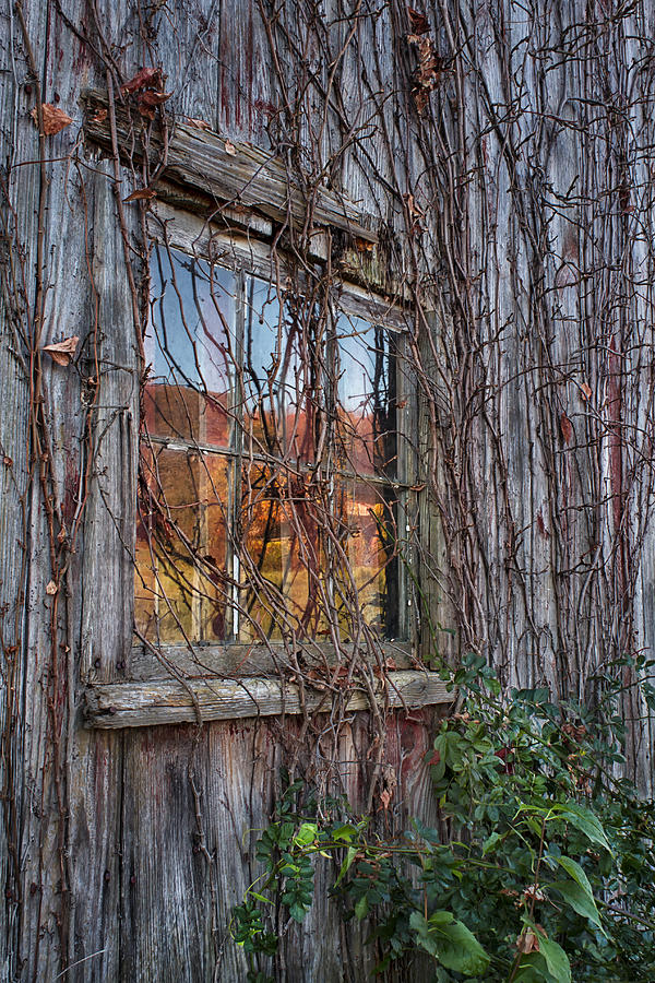 Autumn Photograph - Autumn Reflections by John Vose