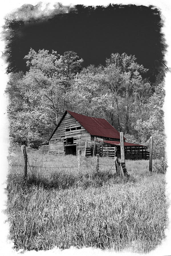 Appalachia Photograph - Big Red by Debra and Dave Vanderlaan