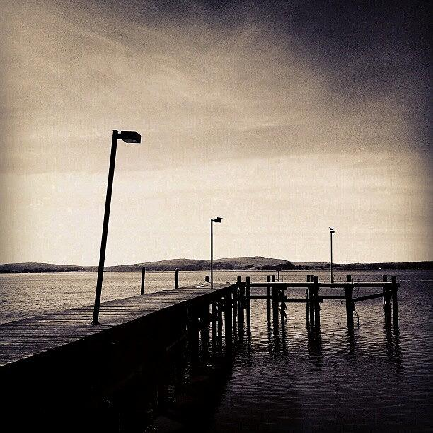 Black And White Photograph - 2 Bird Dock by CML Brown