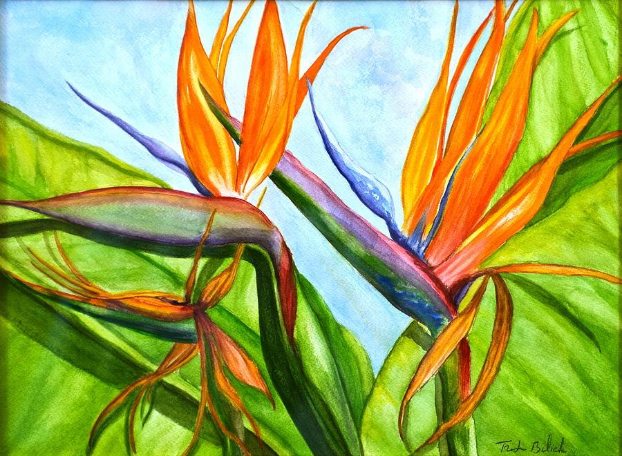 Birds of Paradise by Trish Bilich