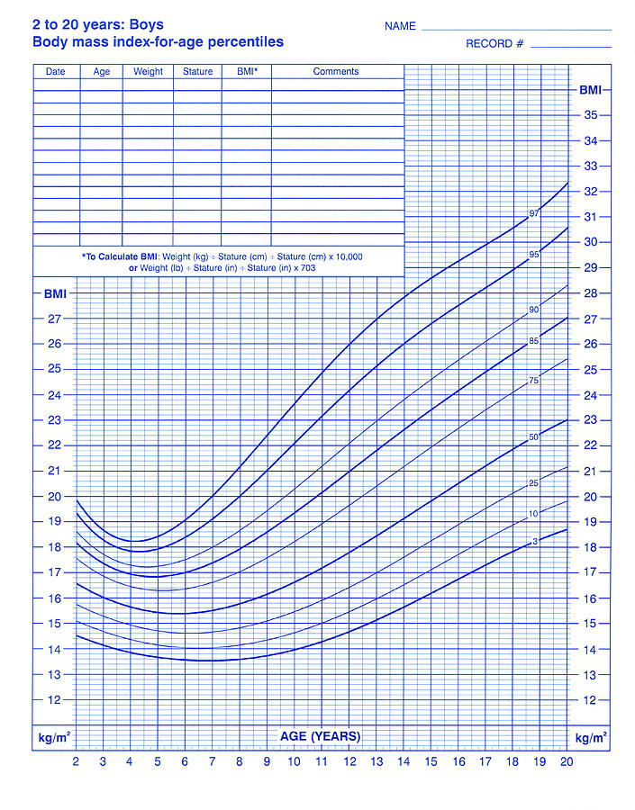body mass index chart photograph by cdc  science photo library