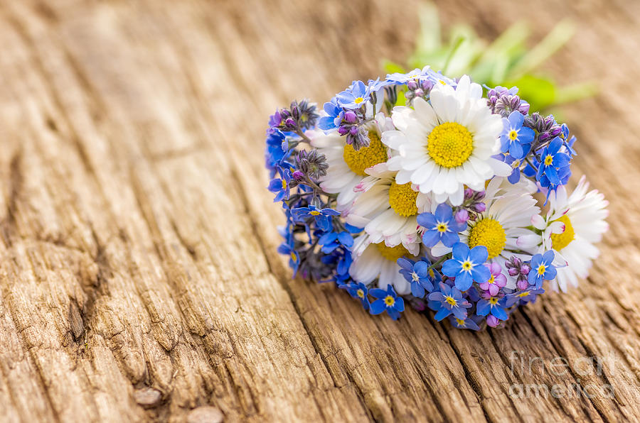 Bouquet Photograph - Bouquet With Daisies And Forget-me-not by Palatia Photo