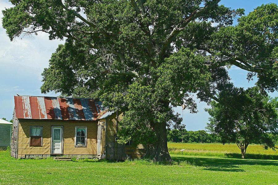Landscape Photograph - Cajun Home by Ronald Olivier