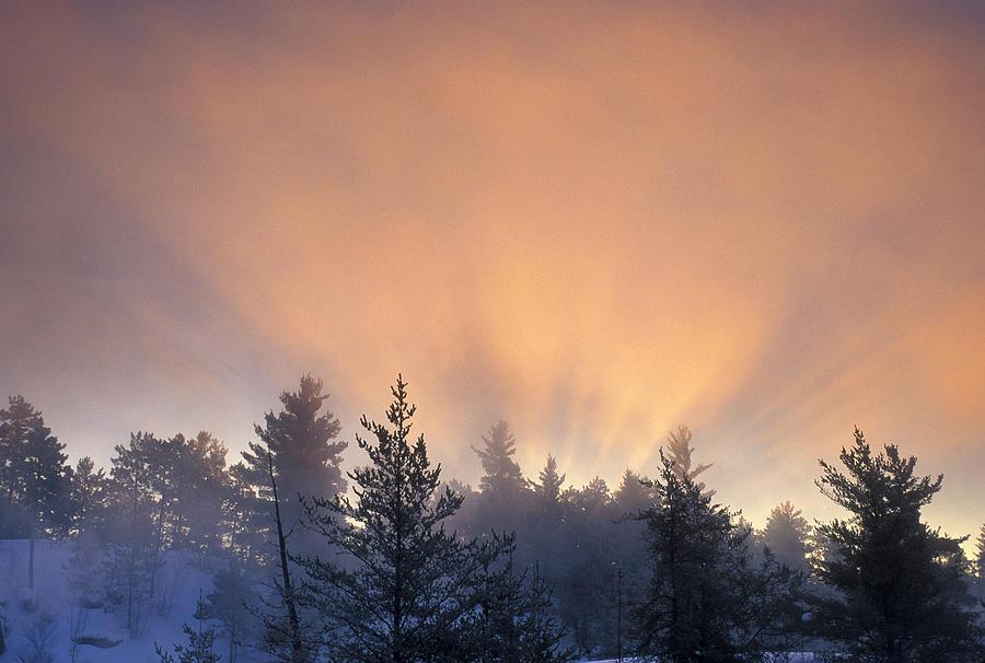Canadian Winter Landscape by Don Johnston
