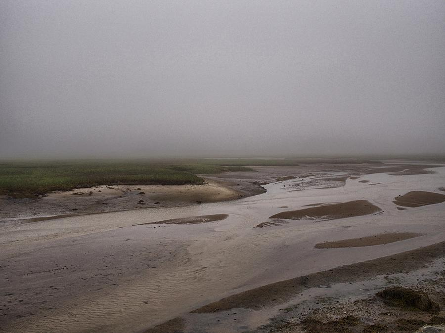 Cape Cod Marsh by Pamela Hodgdon