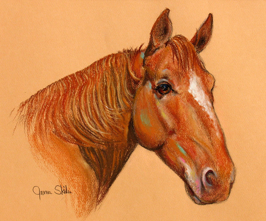 Horse Drawing Drawing - Catch Me If You Can by James Skiles