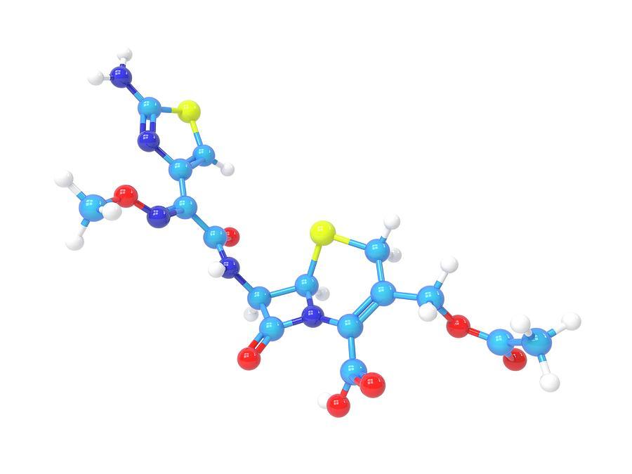Antibacterial Photograph - Cefotaxime Molecule by Indigo Molecular Images