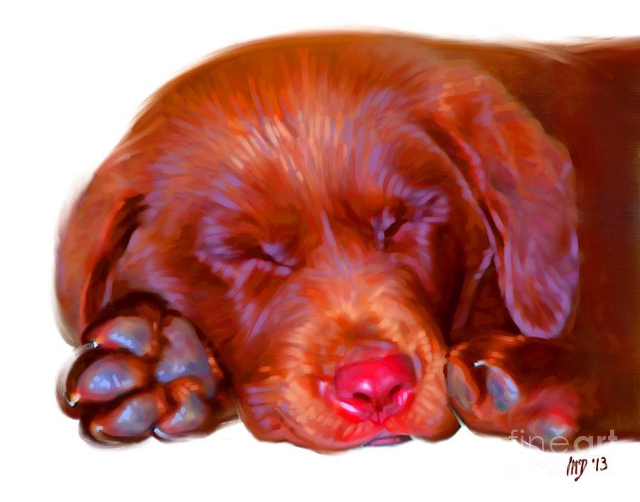 Dog Painting - Chocolate Labrador Puppy by Iain McDonald