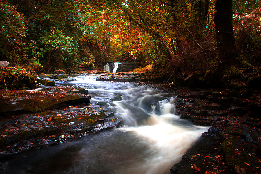 Clare Glens Photograph