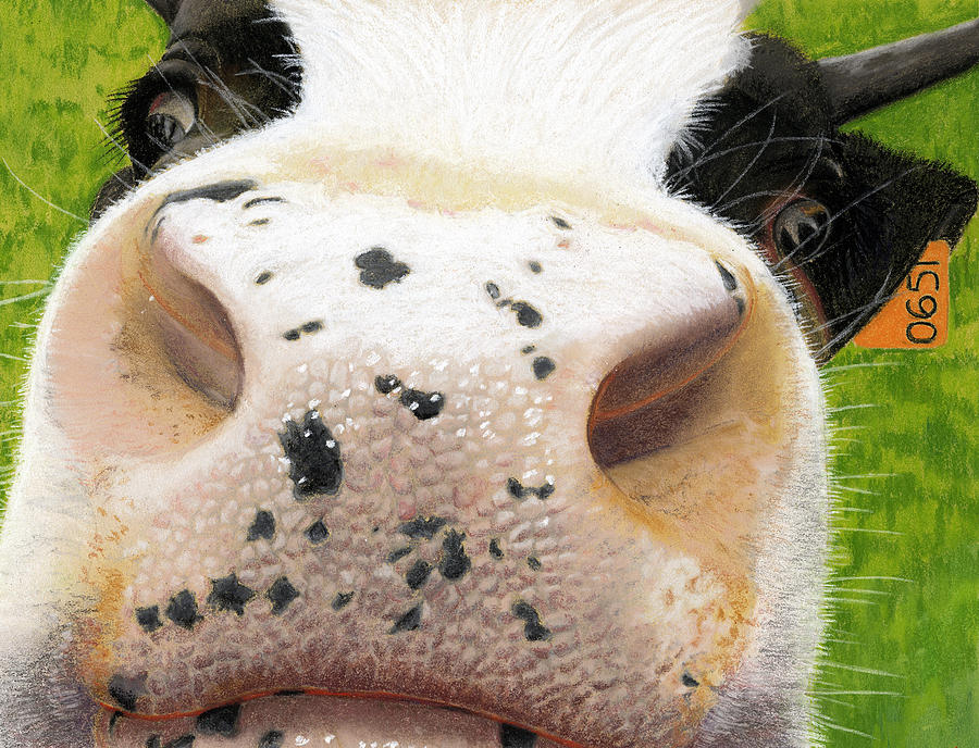 Kitchen Painting - Cow No. 0651 by Carol McCarty