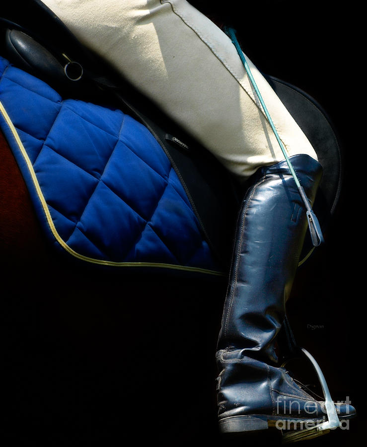 Dressage Photograph - Crop And Boot  by Steven Digman