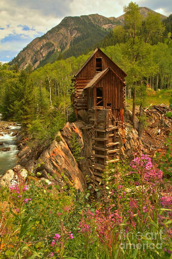 Crystal Colorado Photograph - Crystal Mill Wildflowers by Adam Jewell