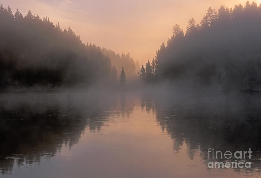 Yellowstone Photograph - Dawn On The Yellowstone River by Sandra Bronstein