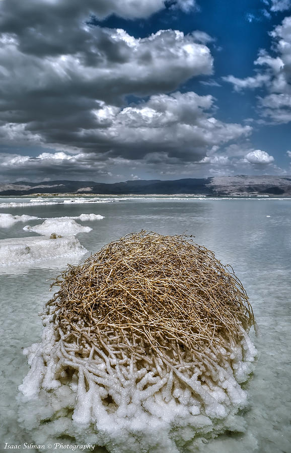 Dead Sea Photograph - Dead Sea Monuments Of Nature  by Isaac Silman