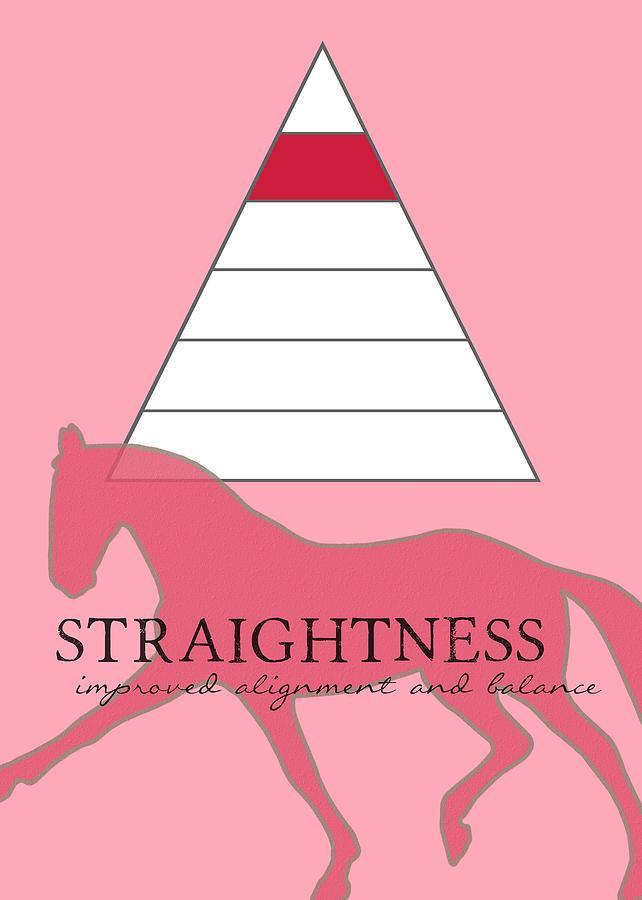 Horse Photograph - Define Straightness by JAMART Photography