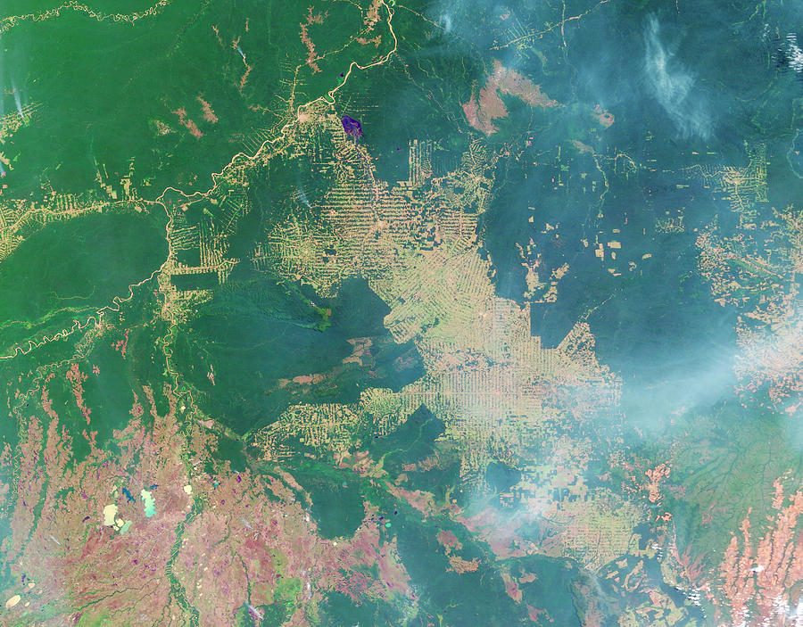 Forest Photograph - Deforestation In The Amazon by Nasa Earth Observatory