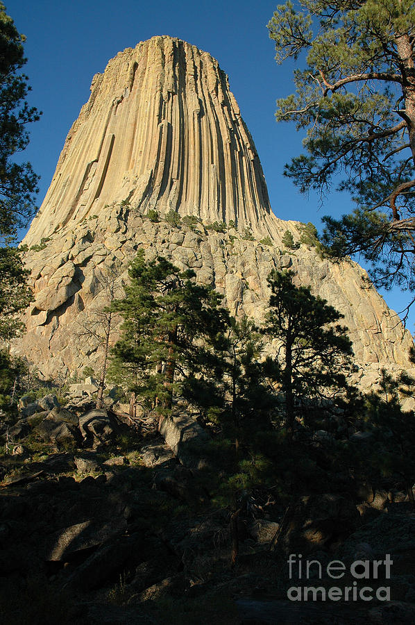 devils tower chatrooms Ottis elwood toole was an american serial killer,  austin's university of texas' clock tower and shot at students and  victims in chatrooms such as.