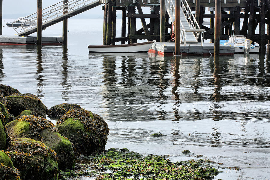 Dock Photograph - Dockside by JC Findley