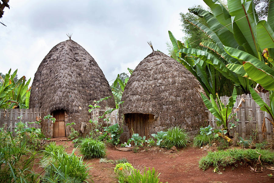 Abyssinia Photograph - Dorze In The Guge Mountains, Ethiopia by Martin Zwick