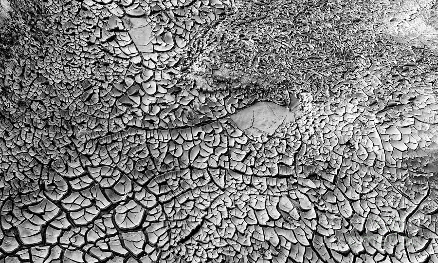 Arid Photograph - Dried Mud Pan It Time Of Drought by Alexandr  Malyshev