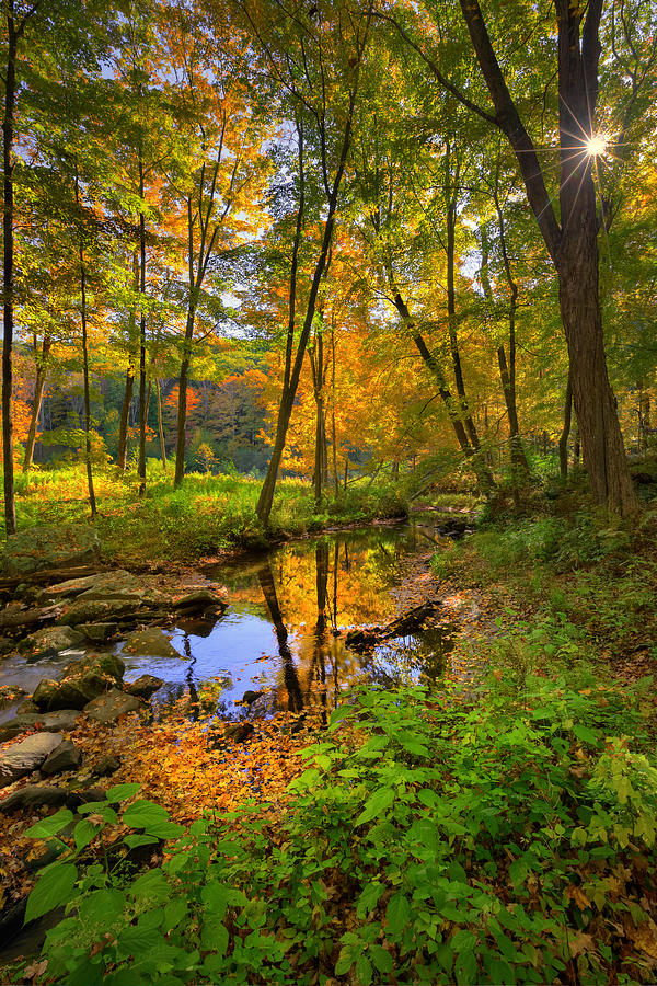 New England Landscape Photograph - Early Autumn by Bill Wakeley