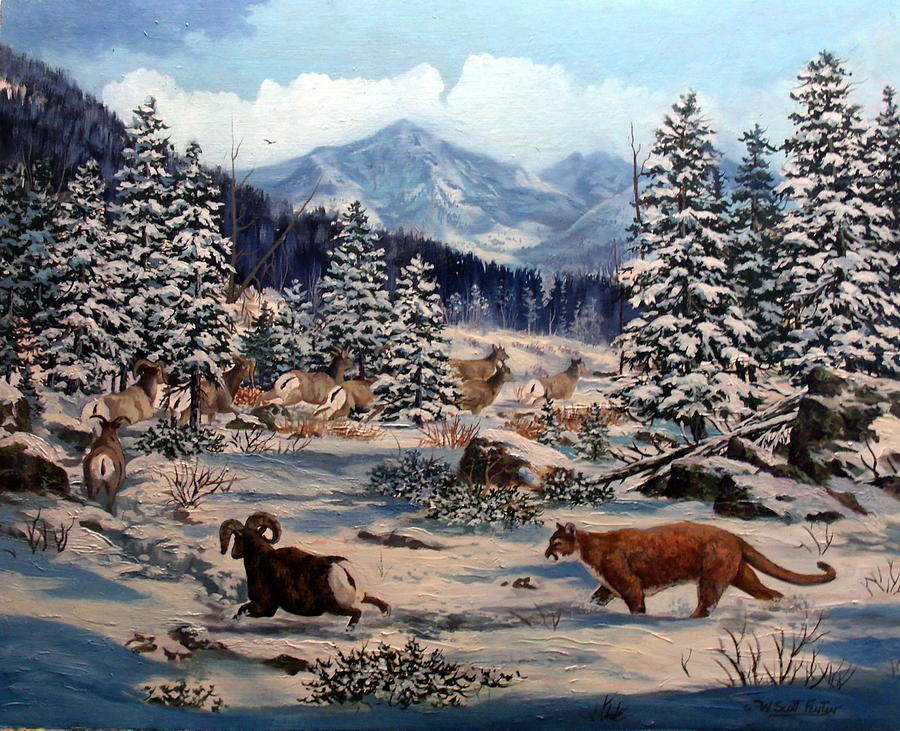 Cougar Painting - Element Of Suprise by W  Scott Fenton