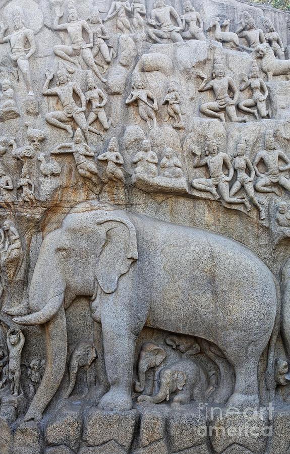 Elephant Photograph - Elephant Sculpture At Mamallapuram  by Robert Preston