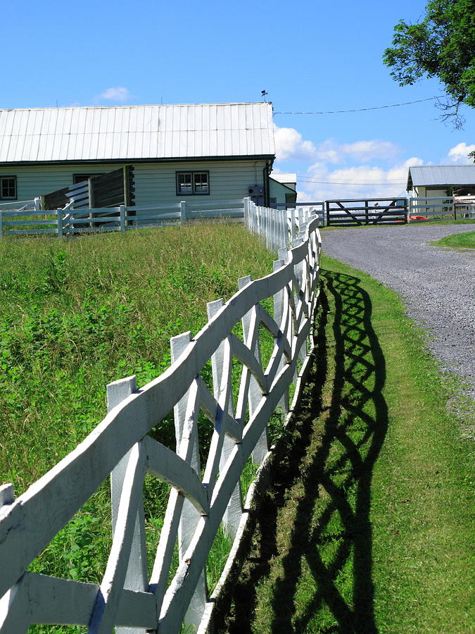 Agriculture Photograph - Farm And Fence by Frank Romeo