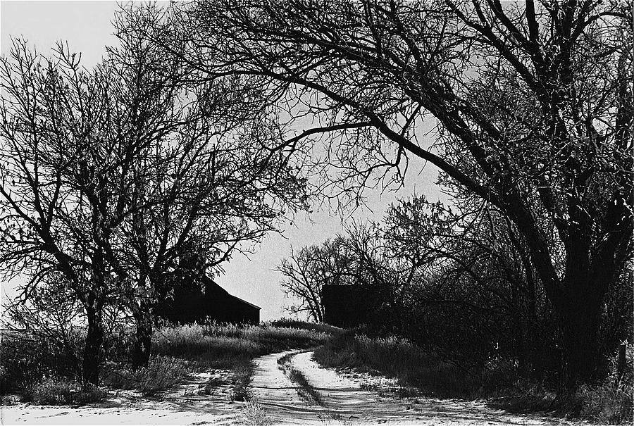 Film Noir Burt Lancaster Robert Siodmak The Killers 1946 Farm House Near Aberdeen Sd 1965 Photograph by David Lee Guss