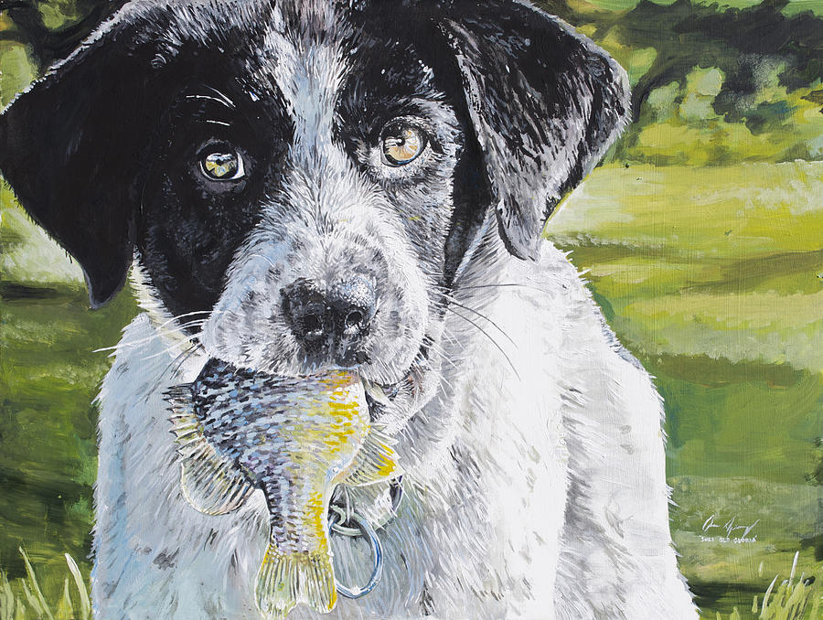 Dog Painting - First Catch by Aaron Spong