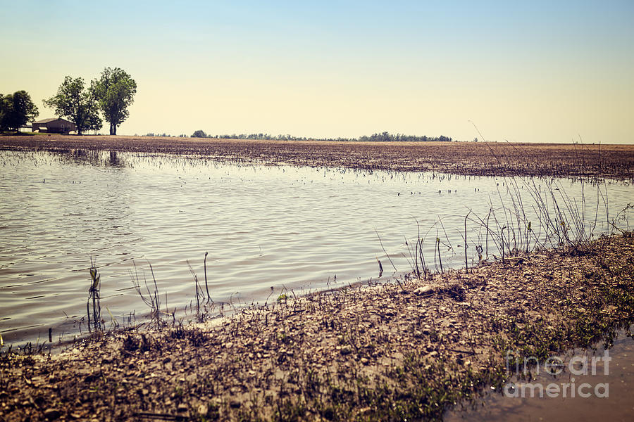 Flooded Farmland Photograph
