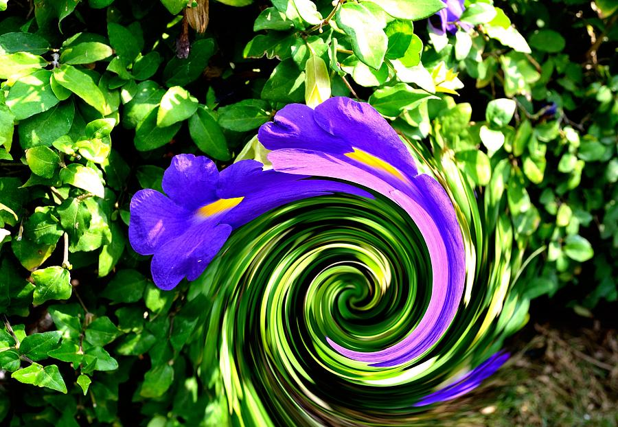 Flower Abstract Study-2 Photograph - Flower Abstract Study-2 by Anand Swaroop Manchiraju